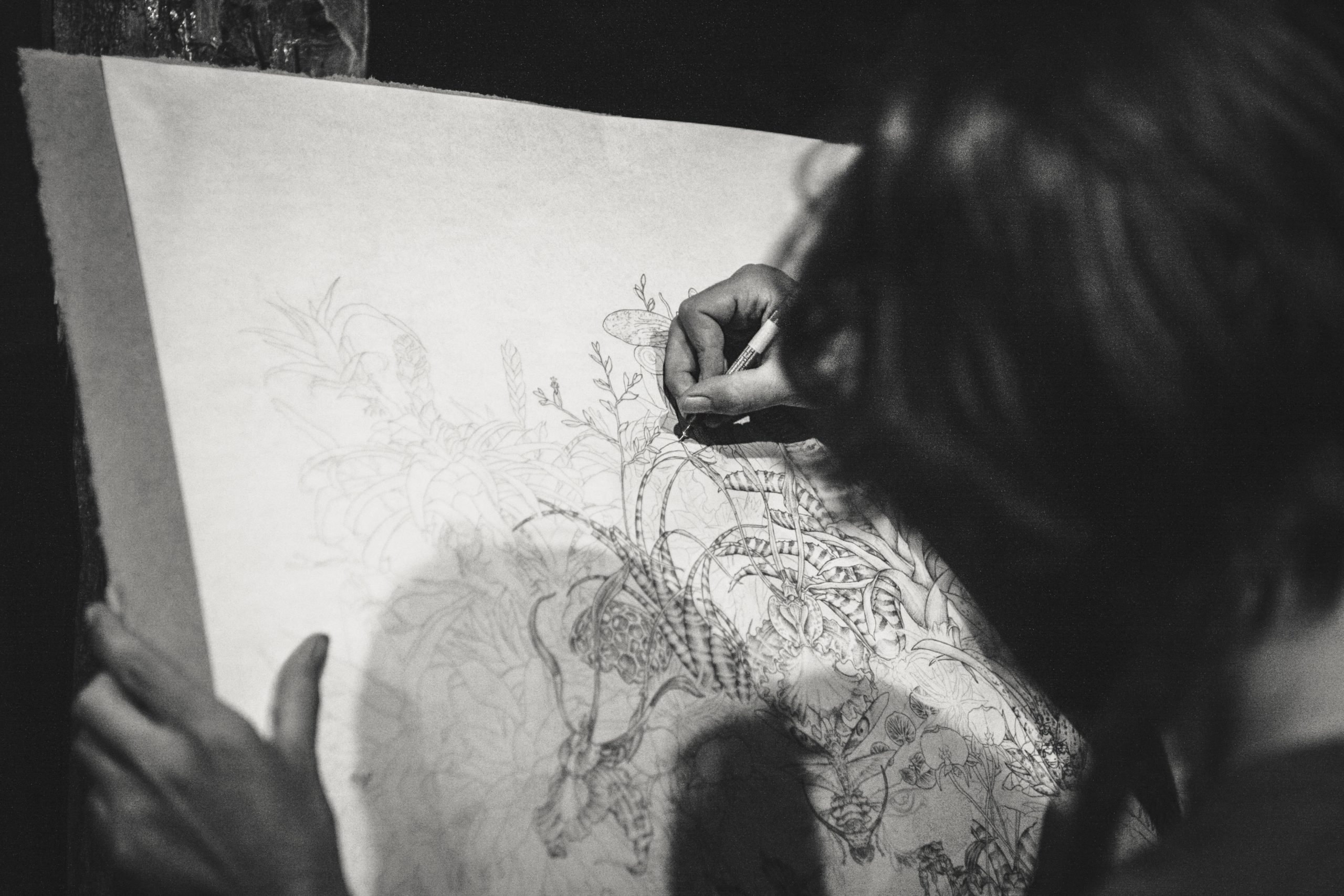 Top 5 Scenery Drawing Steps To Draw Easily: Important Steps To Know